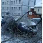 """""""На улицу выходить страшно"""": непогода ударила по Владивостоку"""