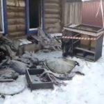 Семья из 6 человек оказалась в эпицентре пожара: пятеро из них – дети