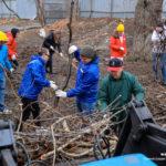 Добрый субботник: поваленные деревья вместе с волонтерами и горожанами убирала мэрия