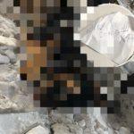 «Расправой угрожали не раз»: известному человеку подбросили труп с запиской