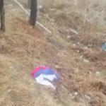 «В Советском Союзе бы расстреляли»: находка в овраге возмутила мужчину