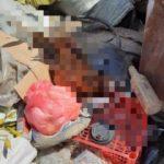 «Можно поймать очень многих»: трупы обнаружены после городской ярмарки