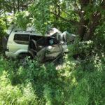 Уснул от усталости. Автомобиль с ребёнком врезался в дерево
