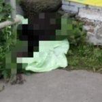 «Запах стоит соответствующий»: на остановке «Зелёный угол» обнаружен труп