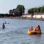 «Медведи тоже люди»: необычную картину сняли на видео на Набережной