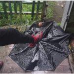 Придет с антициклоном: какая погода ждет жителей Приморья после дождей