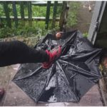 Циклон переместится, вихрь усилится: синоптики уточнили погоду в Приморье